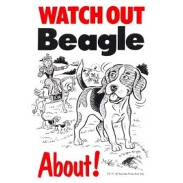BEAGLE ABOUT - DOG SIGN