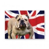 British Bulldog card