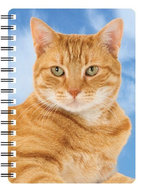 Ginger Cat 3D Notebook
