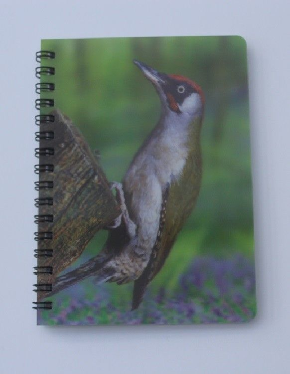 Green Woodpecker 3D picture Notebook