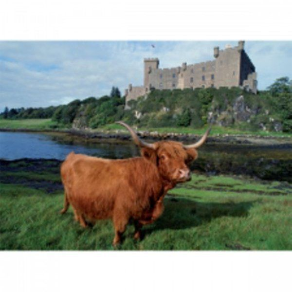 HIGHLAND COW GREETINGS CARD WITH EDINBURGH CASTLE