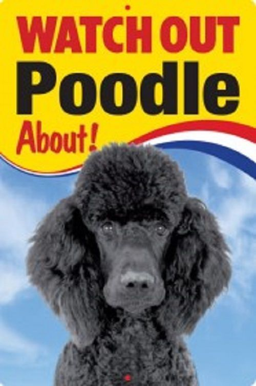 POODLE 3D  DOG SIGN
