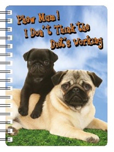 Pug Diet not working  3D Notebook