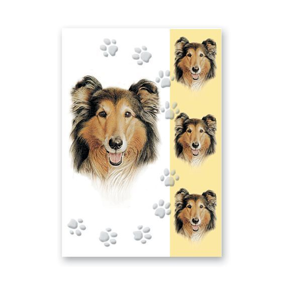 ROUGH COLLIE GREETINGS CARD