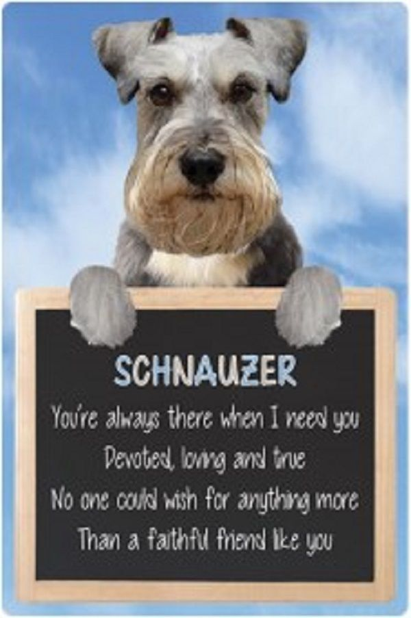 Schnauzer 3D home hang up sign