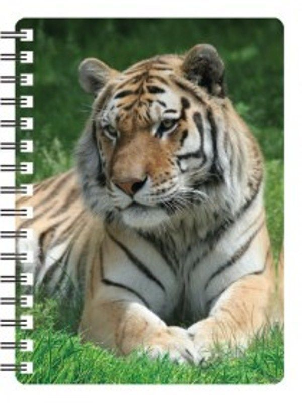 Siberian Tiger 3D notebook (lying down)