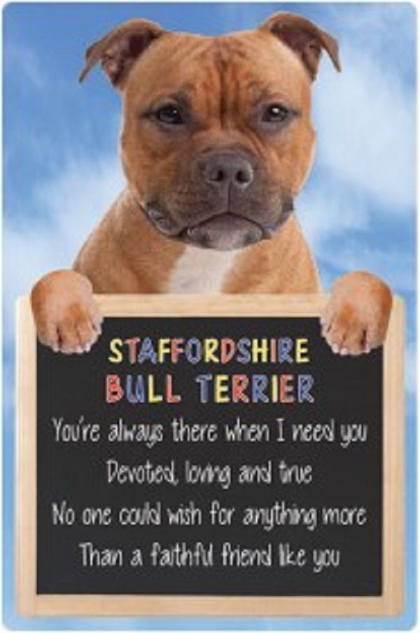 Staffordshire Bull terrier 3D home hang up sign