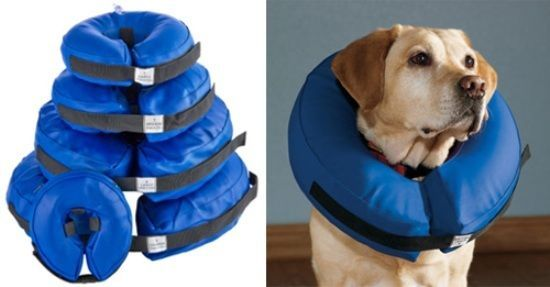 "VETERINARY DOG COLLAR SOFT INFLATABLE VET COLLAR REPLACES HARD ""LAMP SHADE"""