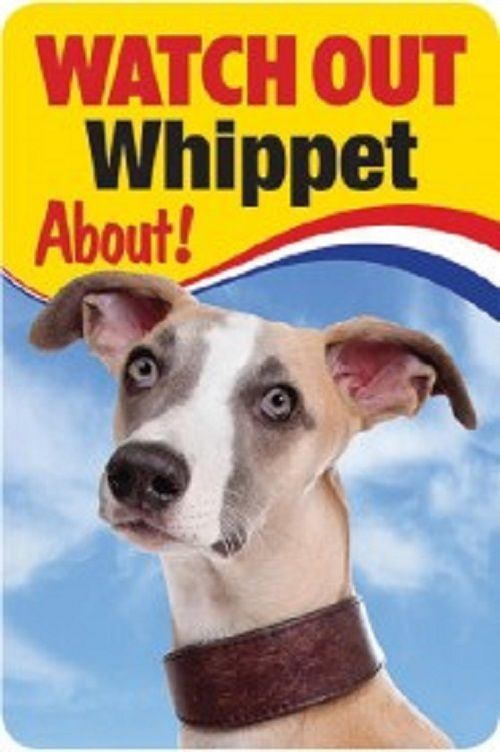 WHIPPET  3D  DOG SIGN