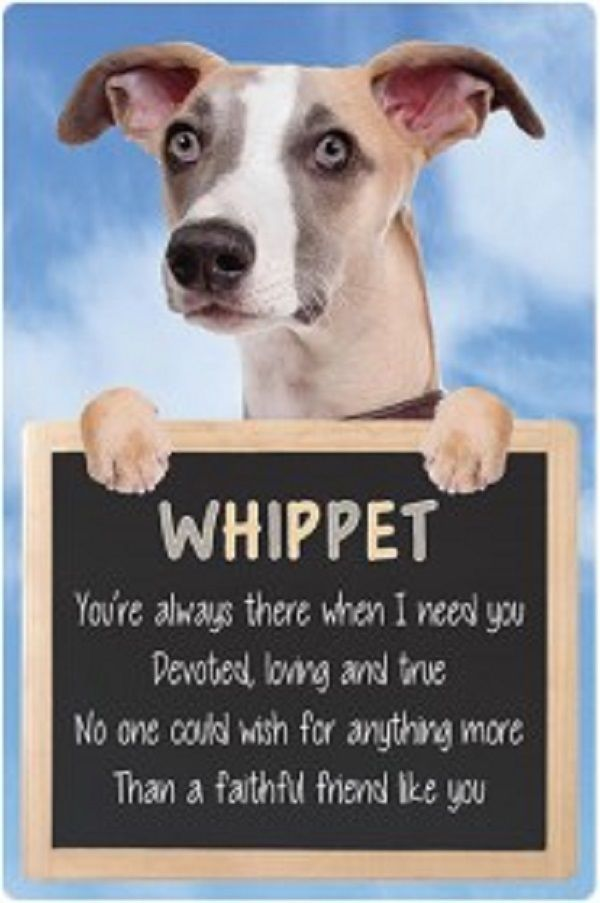 Whippet 3D home hang up sign