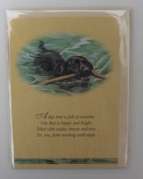 BLACK LABRADOR SWIMMING GREETINGS CARD