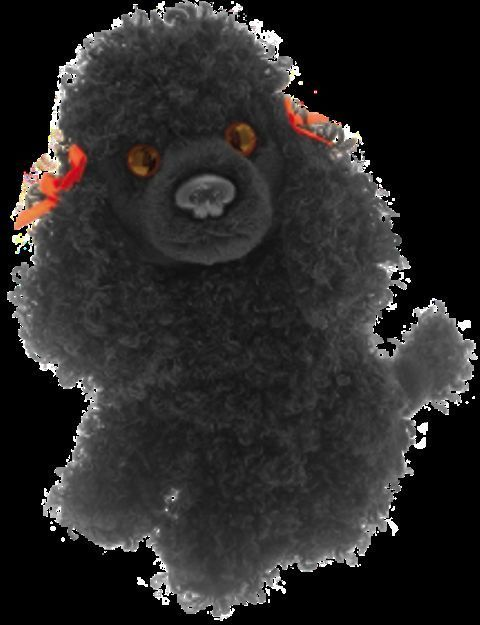 "Black Poodle Cuddly 6.5"" pocket toy dog"
