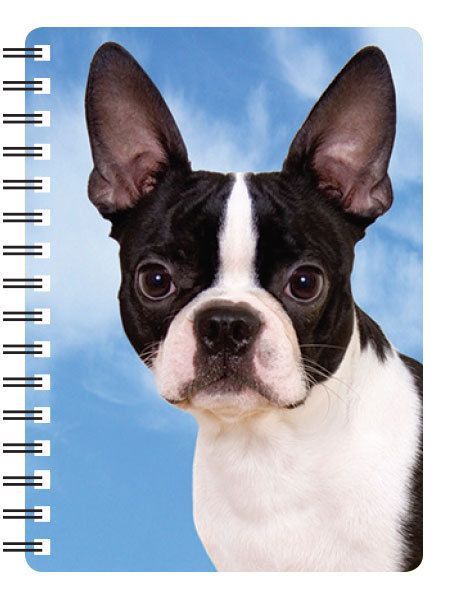 BOSTON TERRIER 3D NOTEBOOK,  PAD ORGANISER ADDRESS BOOK 3D LENTICULAR BOSTON