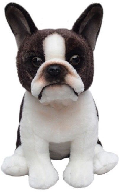 Boston Terrier, gift wrapped or not with or without engraved tag toy dog