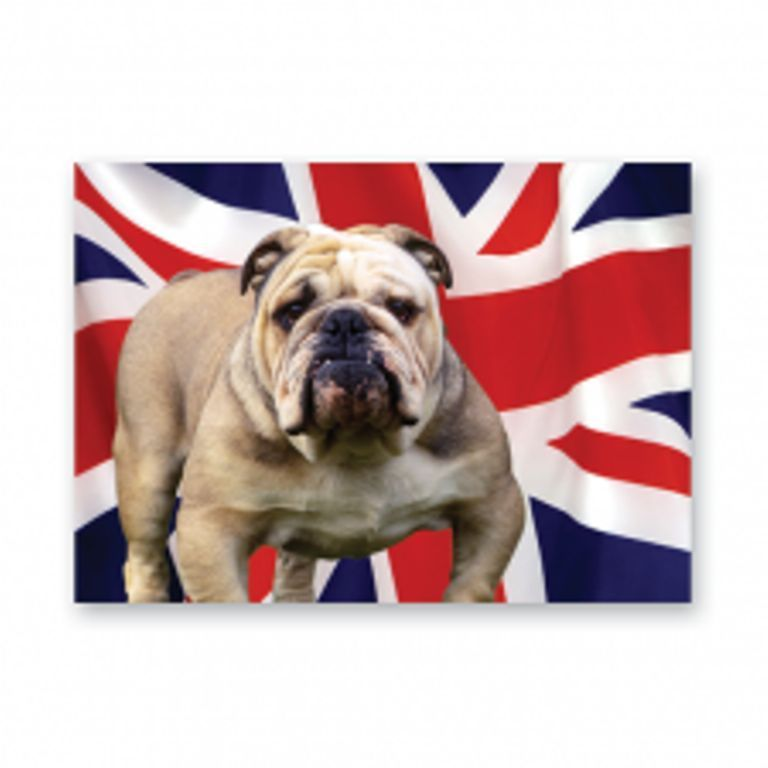 British Bulldog with Union Jack