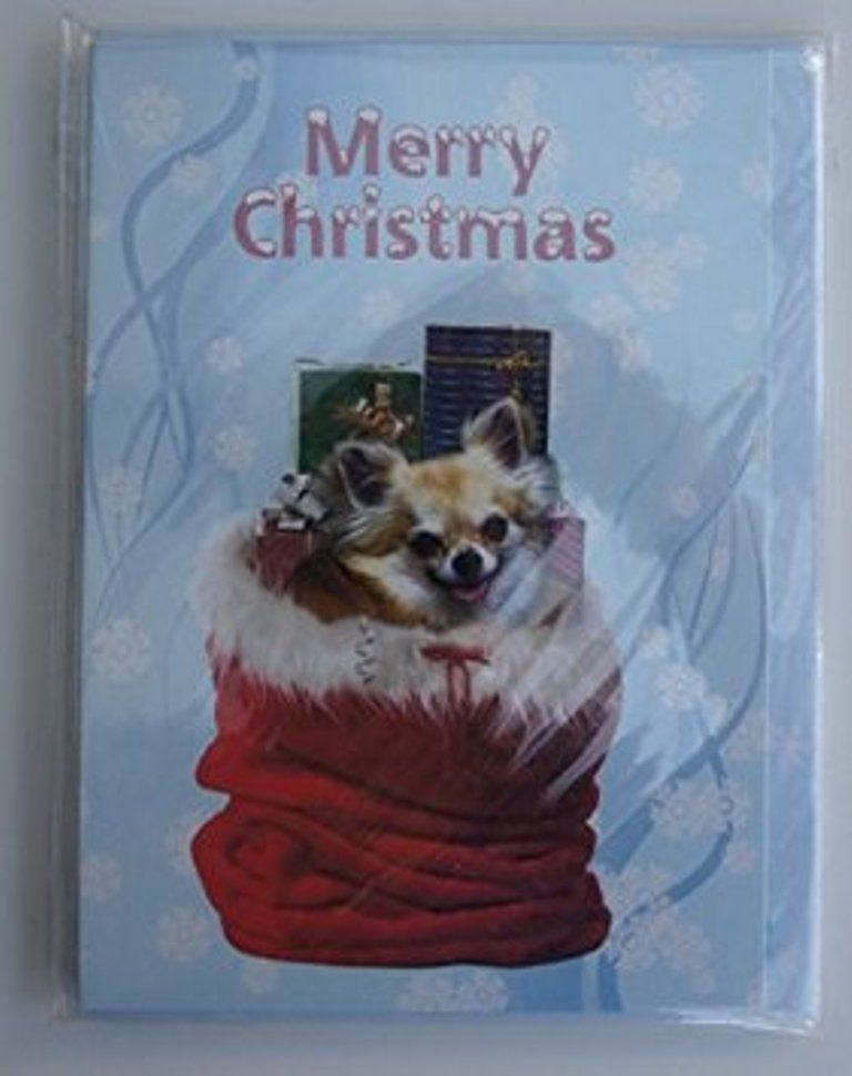 CHIHUAHUA CHRISTMAS GREETINGS CARD