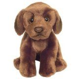 Chocolate Labrador soft and cuddly pocket dog 6.5""