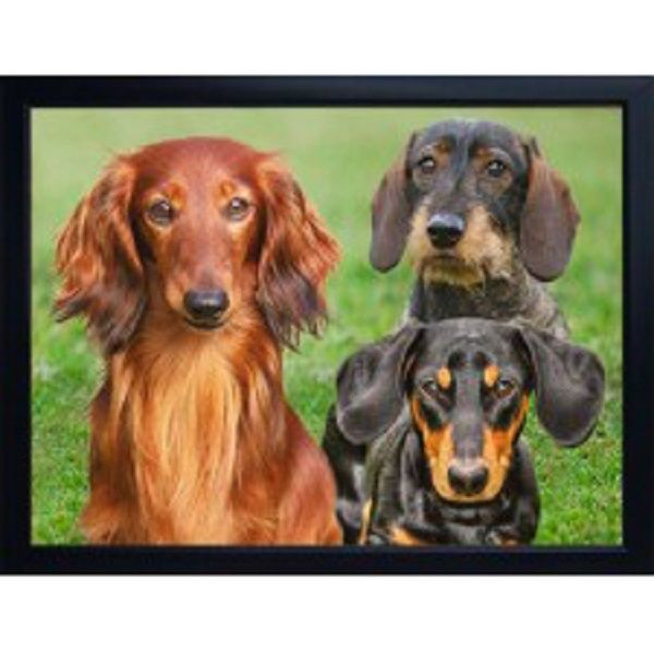 DACHSHUND 3D FRIDGE MAGNET