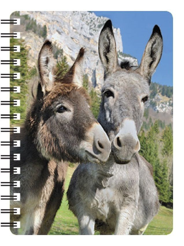 Donkey 3D Notebook