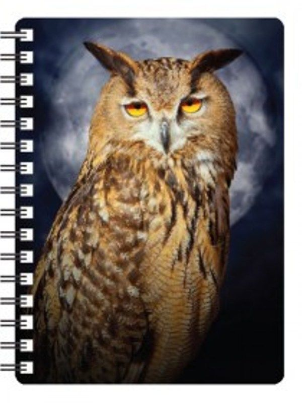 Eagle Owl 3D Notebook