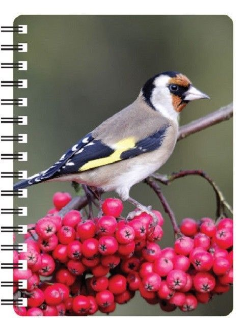 Gold Finch 3D Notebook