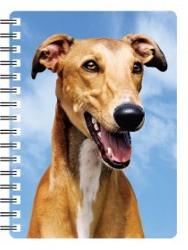 Greyhound 3D Notebook
