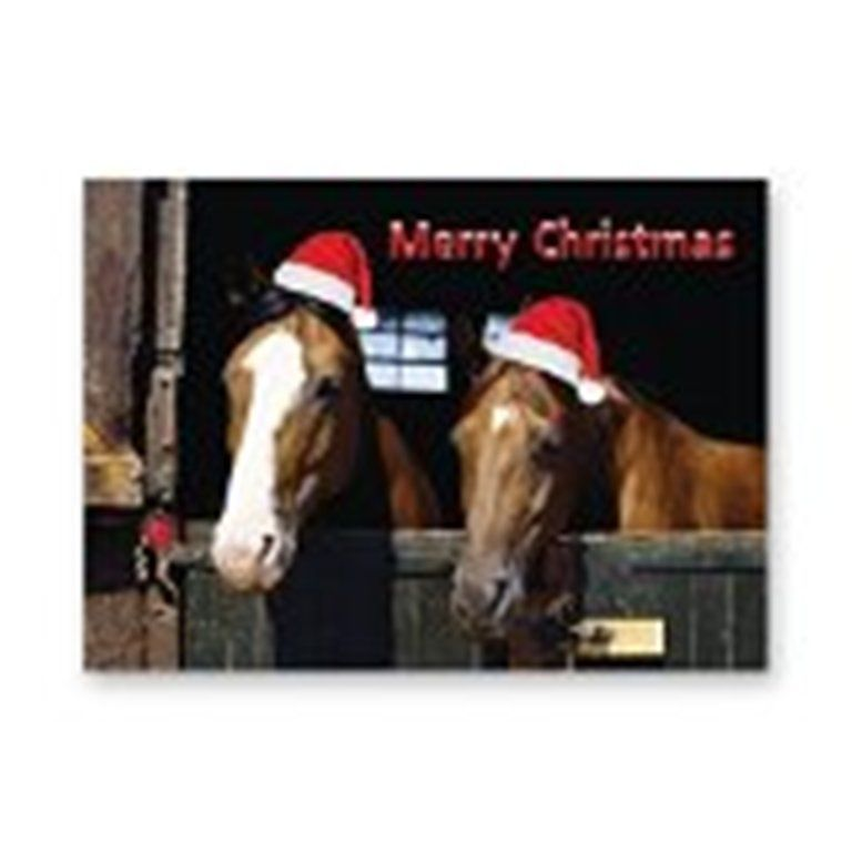 Horse Christmas Cards pack of five