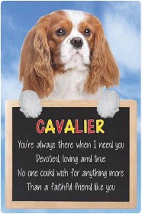 King Charles Cavalier 3D home hang up sign