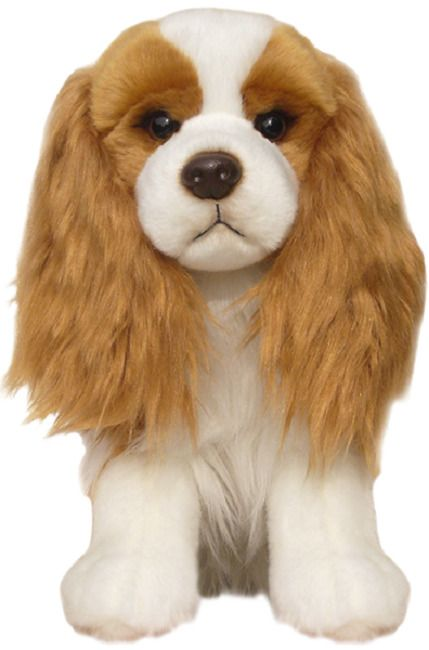 King Charles Cavalier Blenheim gift wrapped or not with or without engraved tag