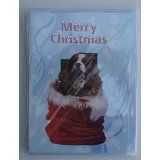 King Charles Cavalier Christmas card pack of one