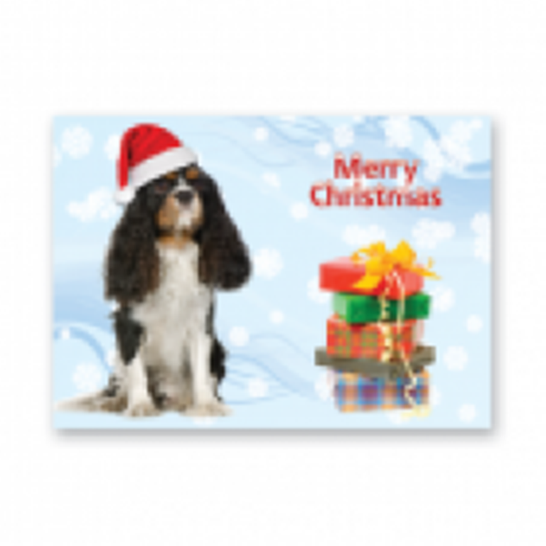 King Charles Cavalier Christmas cards pack of five
