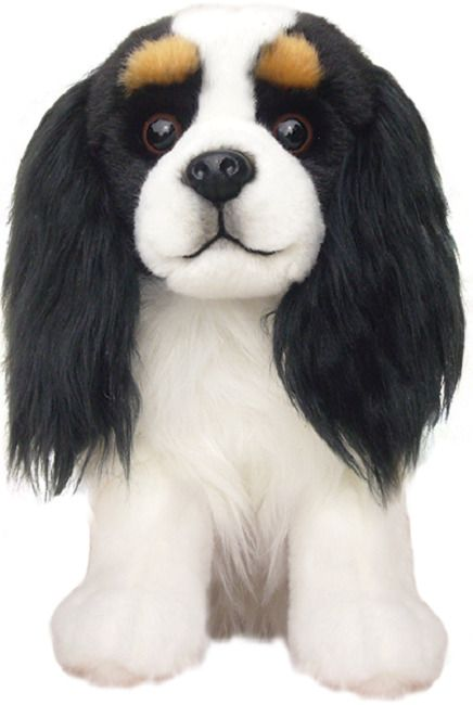 King Charles Cavalier Tri , gift wrapped or not with or without engraved tag