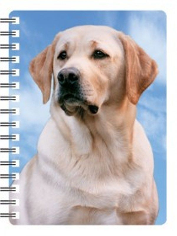 Labrador Golden  (Yellow) 3D Notebook