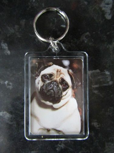 PUG KEY RING QUALITY DOUBLE SIDED ACRYLIC WITH IMAGE BOTH SIDES