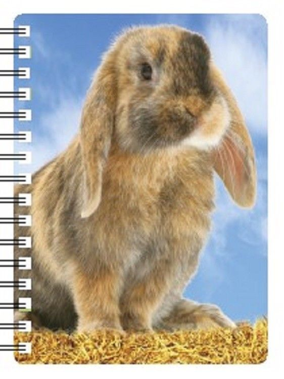 Rabbit 3D Notebook notebook with an amazing 3D picture of a lop eared rabbit