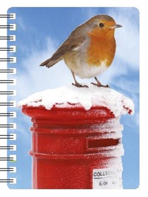 Robin  on postbox 3D Notebook