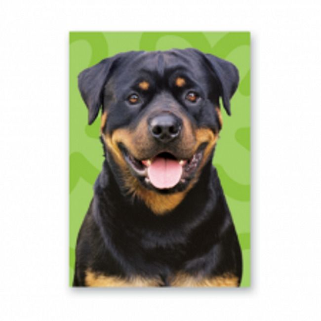 ROTTWEILER GREETINGS CARD green background