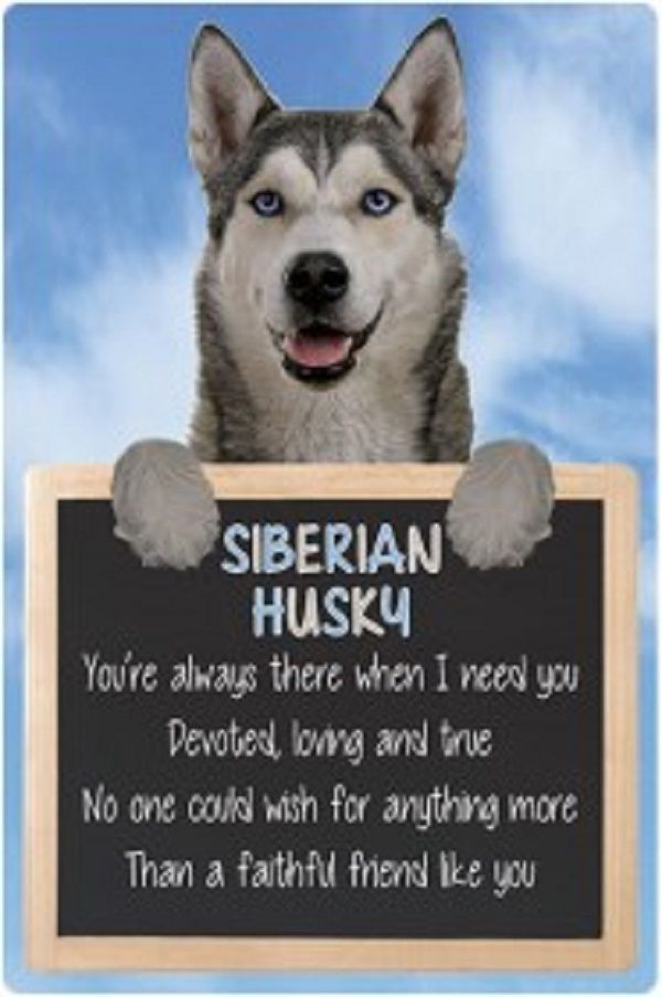 Siberian Husky 3D home hang up sign