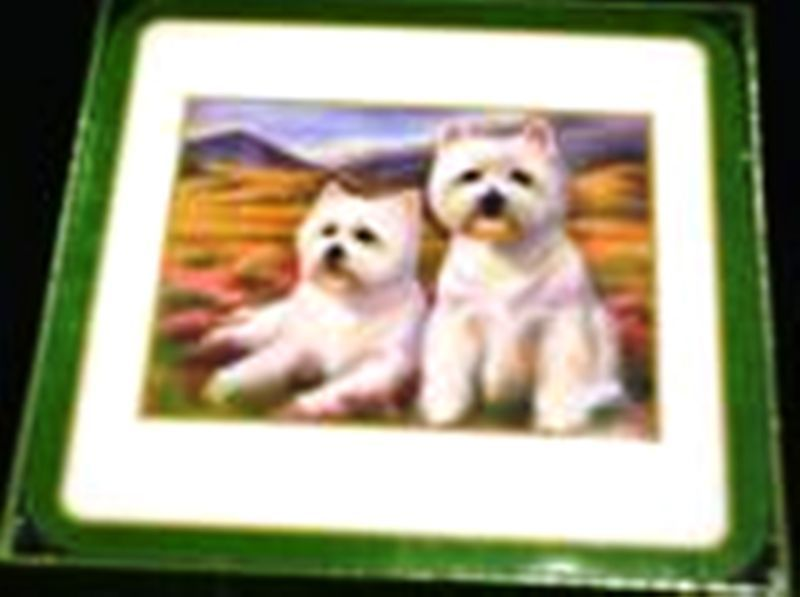 WEST HIGHLAND TERRIER COASTERS - PACK OF 6 WESTIE DOG COASTERS